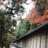 Thumbnail image for Zen Becomes You: Kyoto's Best Gardens