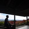 Thumbnail image for Arashiyama Bedlam