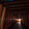 Thumbnail image for Fushimi Inari Shrine at Night