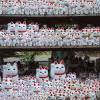 Thumbnail image for How to Visit Tokyo's Lucky Cat Temple