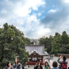 Thumbnail image for Which Popular Tokyo Day Trip is Right For You?