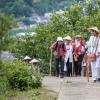 Thumbnail image for Legend of the Shikoku Junrei