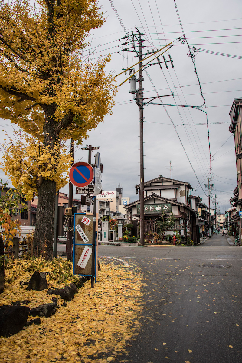 Fall colors in Takayama, Japan