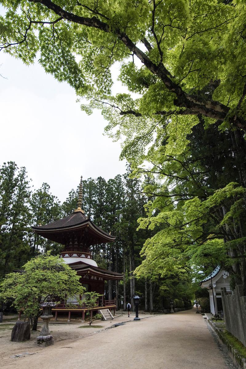 Koyasan Danjo Garan in Wakayama, Japan