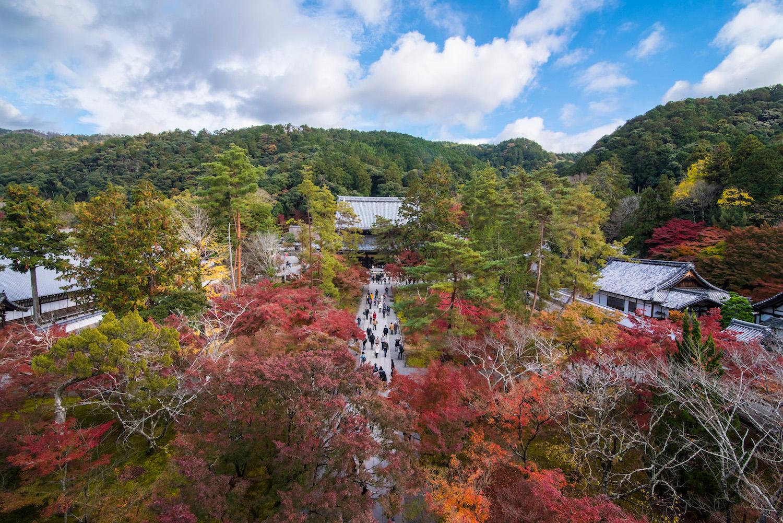 Fall colors in Kyoto, Japan