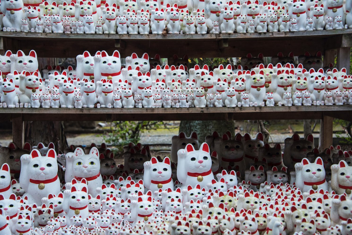 How to Visit Tokyo's Lucky Cat Temple