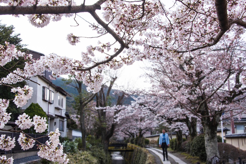 Robert Schrader in Kyoto, Japan