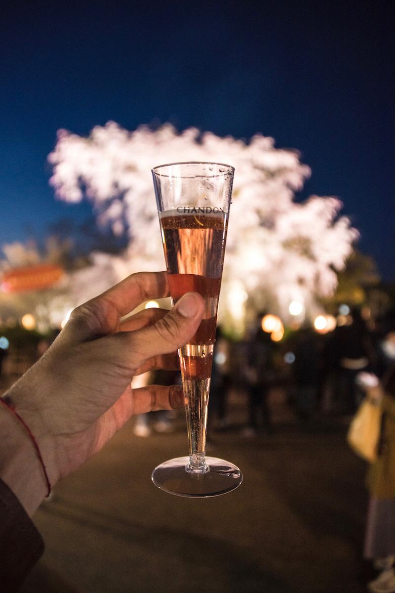Sakura with champagne in Kyoto, Japan