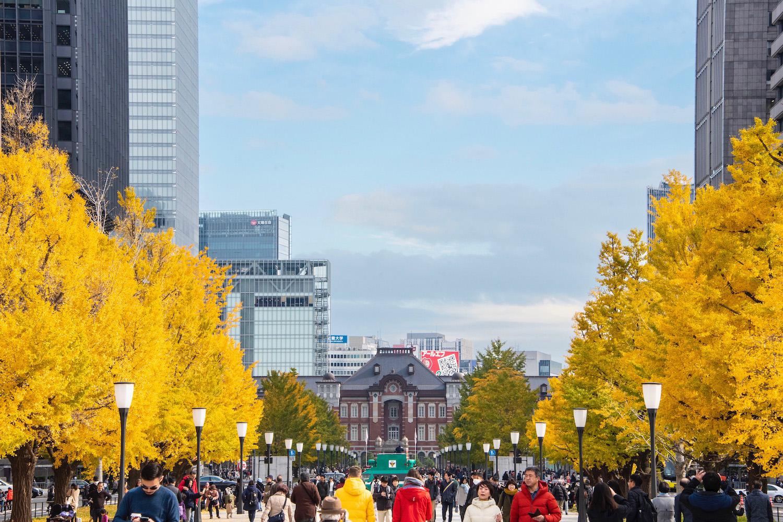 Robert Schrader in Tokyo in Autumn