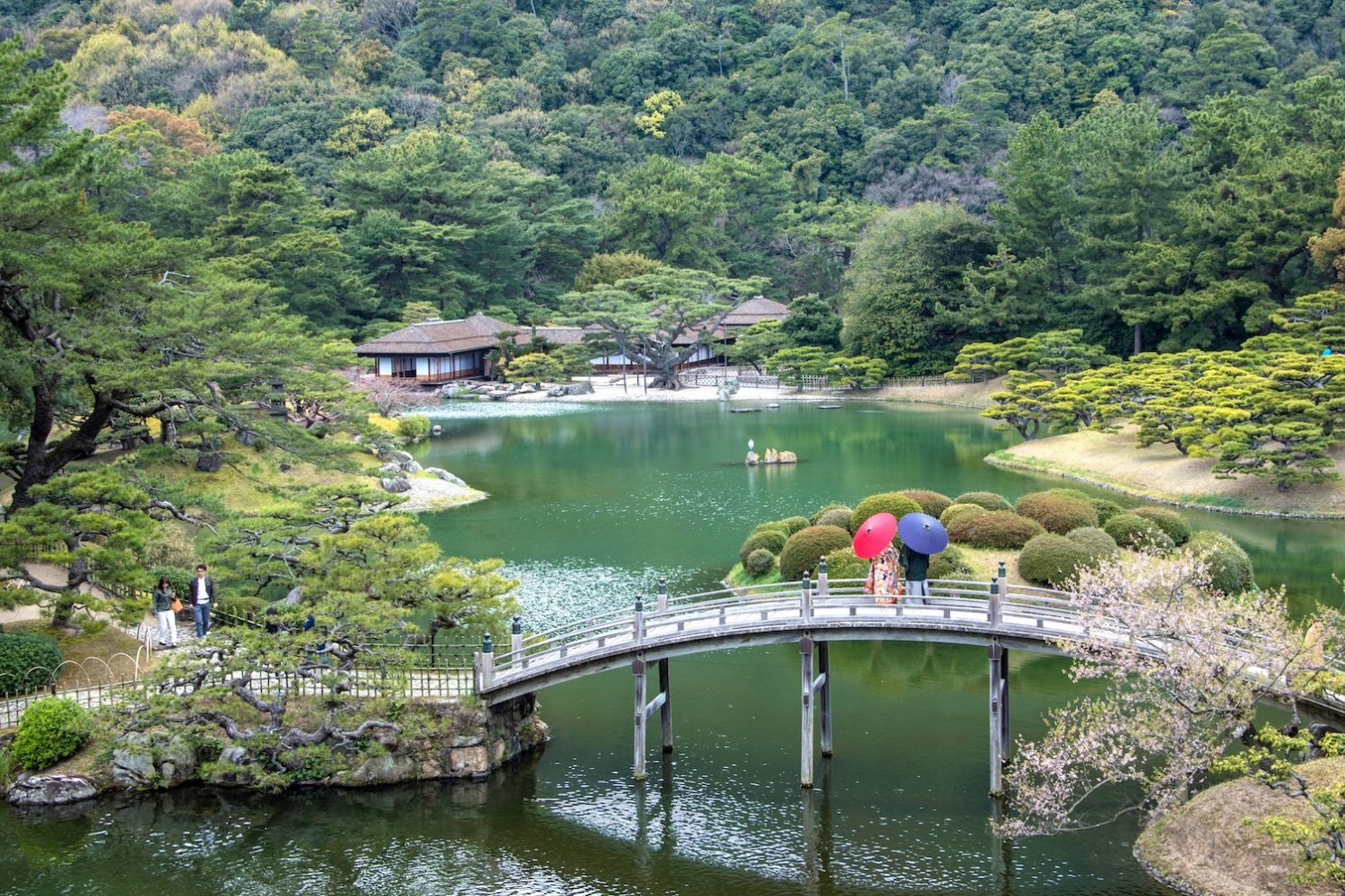 Plan Your Trip to Japan in 2022