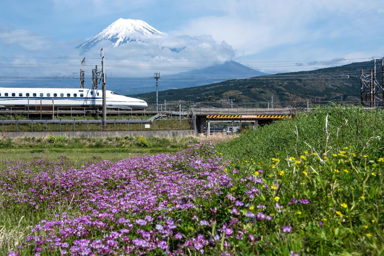 Shinkansen in front of Mt. Fuji