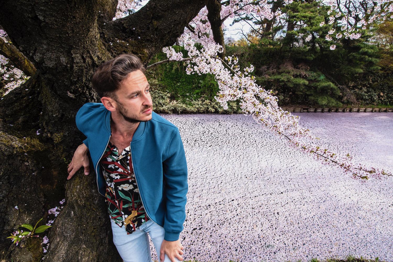 Tohoku cherry blossoms