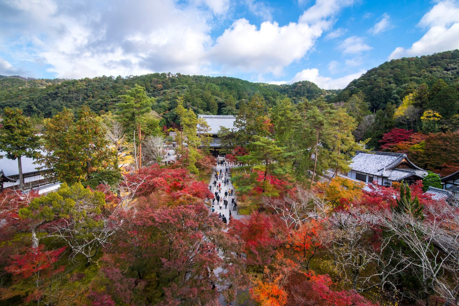 Japan in Autumn: Everything You Need to Know